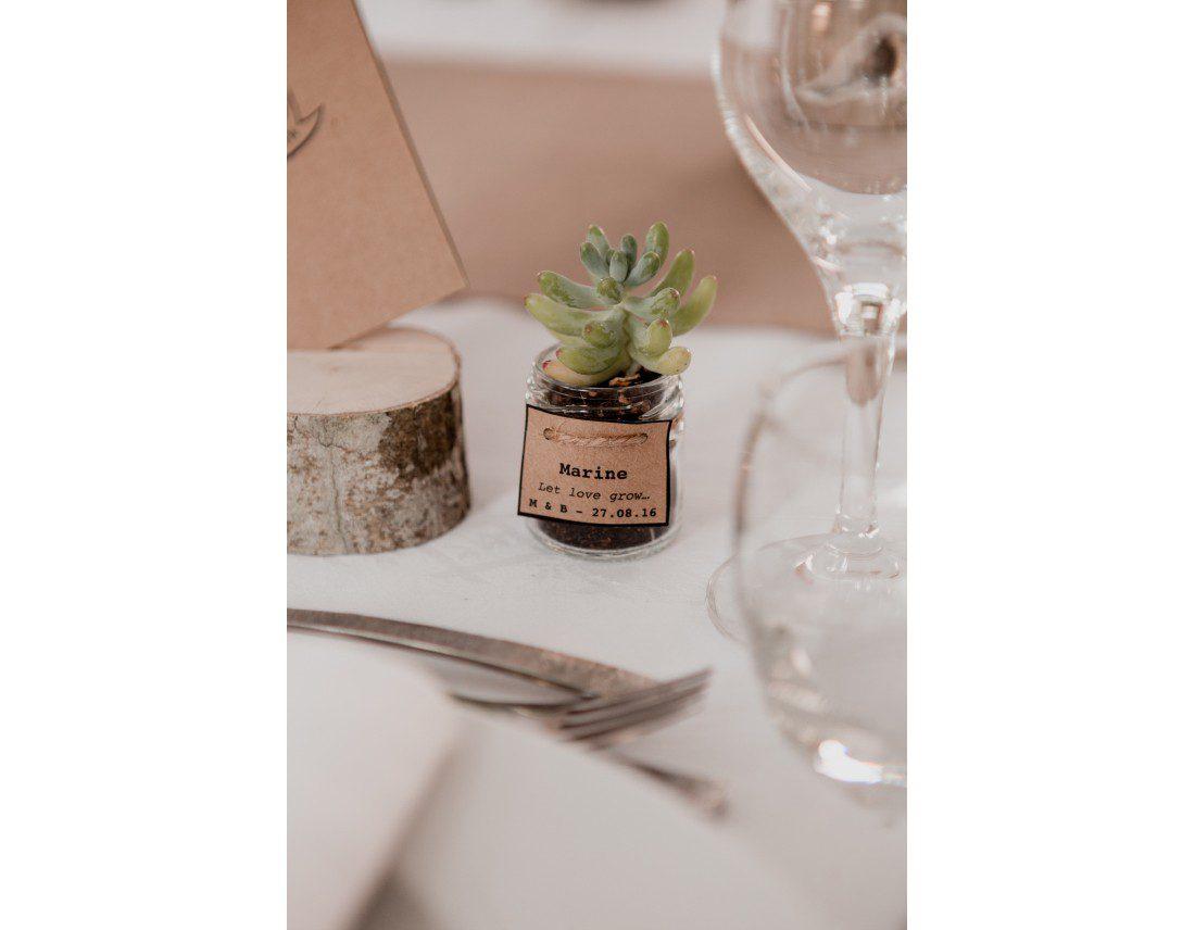 Petite plante grasse en cadeau invité