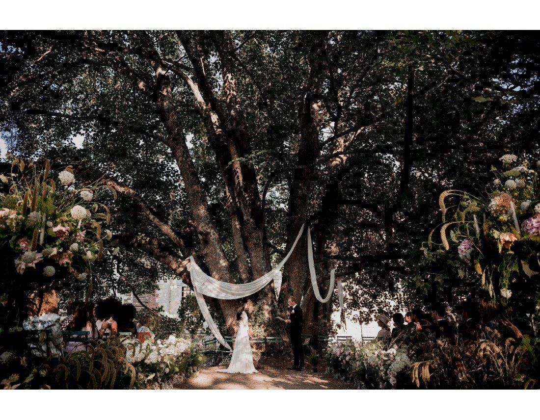 Ceremonie laique sous viel arbre au chateau vallery.